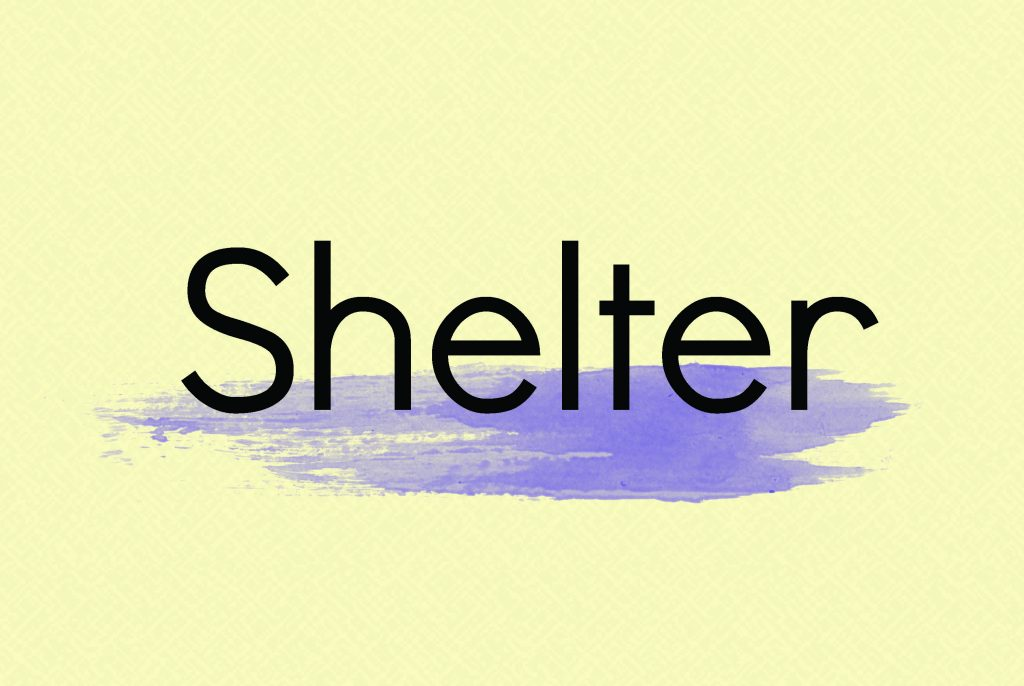 Shelter Title Card